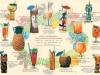 HAWAIIAN DRINKS